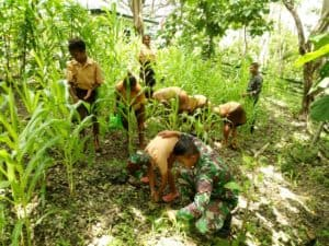 Edukasi Gembira, Kreatif Satgas Yonif 142 Ajarkan Pelajar Berkebun