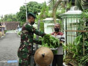 Sayuran Yonarmed 12, Bantu Warga Ngawi Hadapi Covid-19