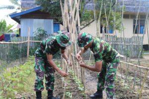 Manfaatkan Lahan Kosong, Satgas Pamtas Yonif R 200 Buat Kebun Edukasi Bagi Warga Perbatasan