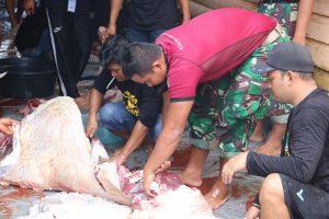 Di Hari Idul Adha, Satgas Pamtas Yonif R 200 Bantu Penyembelihan dan Pendistribusian Daging Kurban untuk Warga Perbatasan
