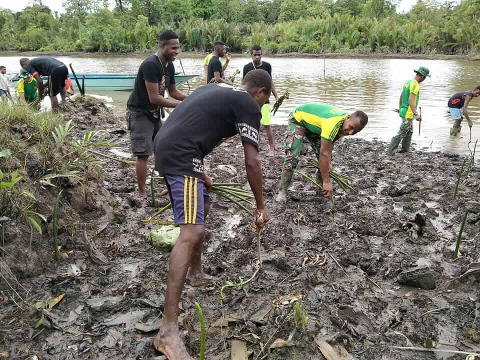Lestarikan Alam Papua, Satgas Yonif 754 Ajak Masyarakat Menanam Mangrove