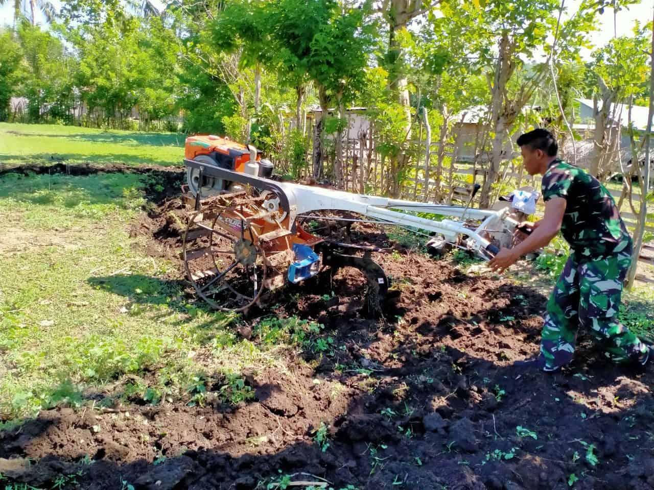 Bantu Petani di Perbatasan, Personel Satgas Yonif 744/SYB Bajak Lahan Kebun Warga