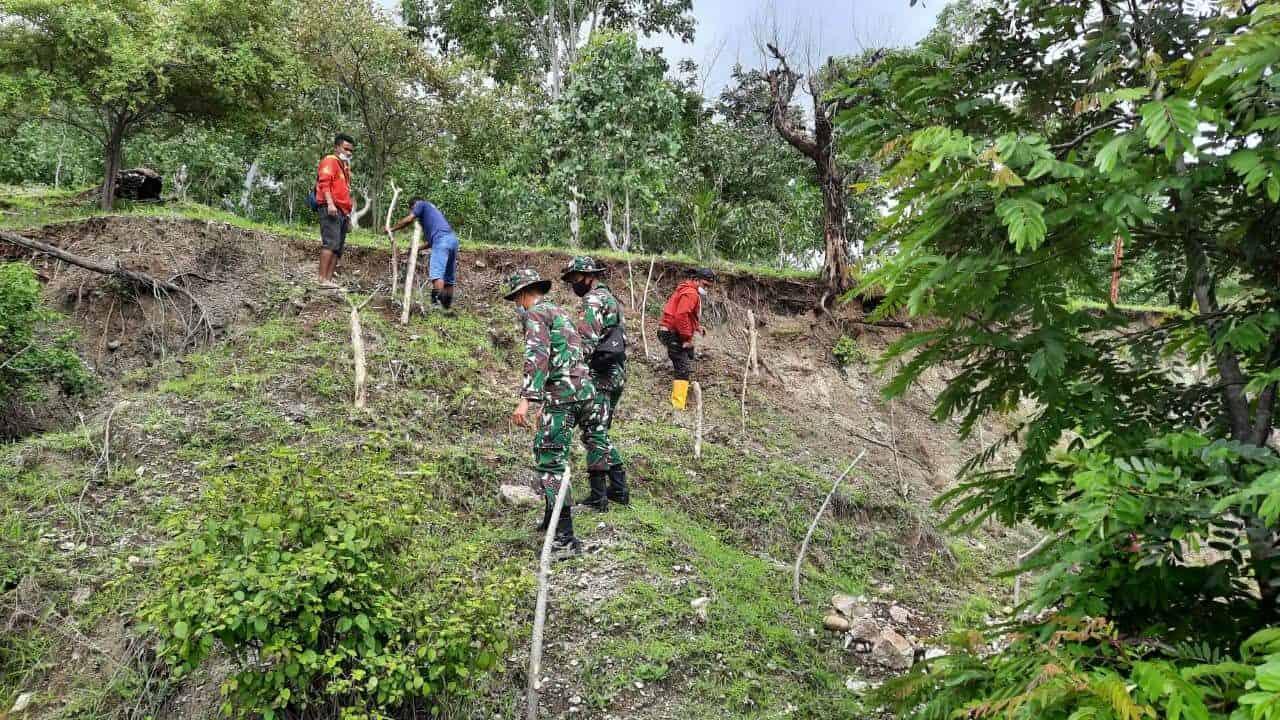 Satgas Yonif RK 744 Lakukan Penghijauan di Perbatasan RI-RDTL