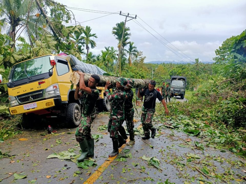 Satgas Yonif 312 Bantu Evakuasi Truk Tertimpa Pohon Tumbang Di Jalan Trans Papua