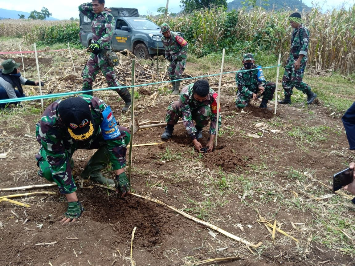 Dukung Ketahanan Pangan, Kodim 1628 Siapkan Lahan 100 Hektar