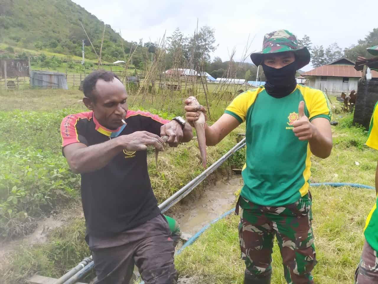 Satgas Yonif PR 432, Ajari Warga Papua Budidaya Ikan Lele