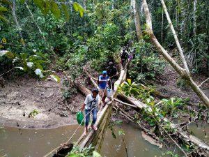 5 Jam Telusuri Hutan Papua, Satgas Yonif 312 Berikan Yankes di Monggoefi Baru