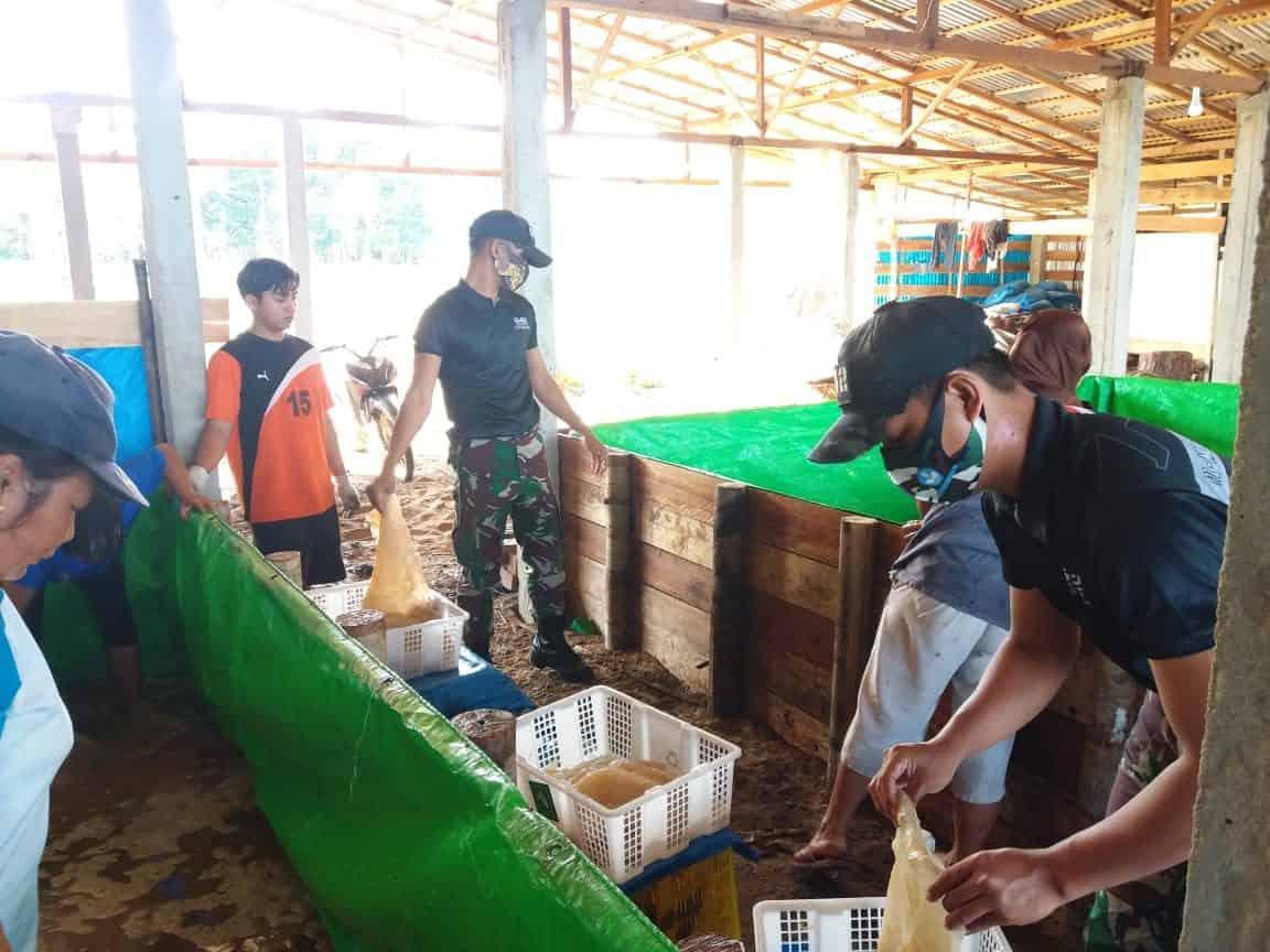 Pererat Silaturahmi, Satgas Yonif 642/Kps Bantu Masyarakat Panen Ubur-ubur