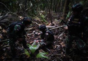 Satgas Yonif 131 Amankan 7 Paket Ganja Kering di Perbatasan RI-PNG