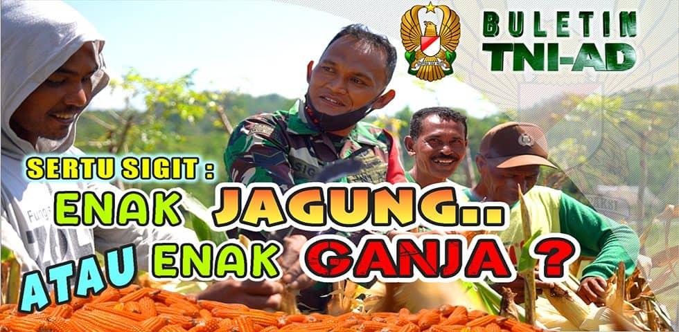 Sertu Sigit: Enak Jagung atau Enak Ganja? | BULETIN TNI AD