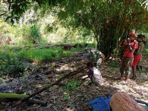 Satgas Yonif 611 Bantu Warga Mengolah Sagu di Papua
