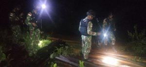 Satgas Pamtas Yonif Mekanis 643/Wns Amankan Kayu Ilegal Saat Patroli Perbatasan