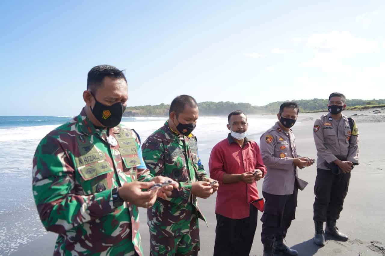 Lerstarikan Satwa Laut, Danrem 162/WB Lepas Tukik di Pantai Sepang Sumbawa Barat