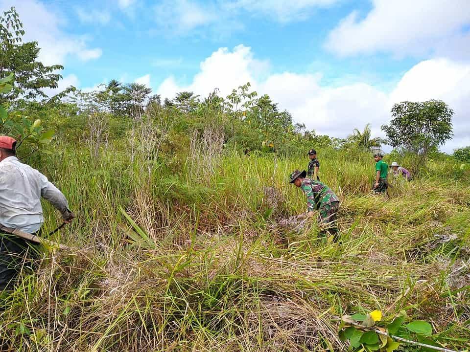 Ketahanan Pangan Desa Senunuk, Anggota Satgas Yonif 144/JY Bantu Warga Buka Lahan Untuk Ditanam Padi