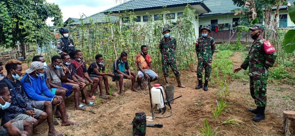 Tingkatkan Hasil Panen, TNI Gelar Penyuluhan Pertanian di Daerah Perbatasan RI-PNG