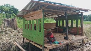 Antisipasi Penyebaran Covid-19 di Perbatasan RI-PNG, TNI Bangun Poskamling Multi Fungsi