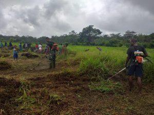 Jelang HUT RI, Satgas Yonif 403/WP Pangkas Padang Rumput Jadi Lapangan Sepak Bola di Perbatasan RI-PNG