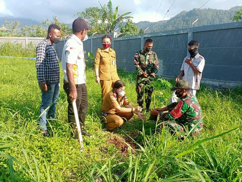 Manfaatkan dan Pelihara Lingkungan Tetap Hijau, TNI Tanam 500 Pohon Pepaya di PLBN Skouw Papua