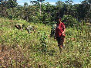 Sambut Hari Proklamasi RI, Satgas Yonif Mekanis 403/WP Ajak Masyarakat Perbatasan RI-PNG Tingkatkan Ekonomi Dari Hasil Bumi