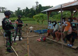 Melalui Penyuluhan Home Industry, Satgas Yonif 512/QY Ajak Masyarakat Olah Hasil Pertanian