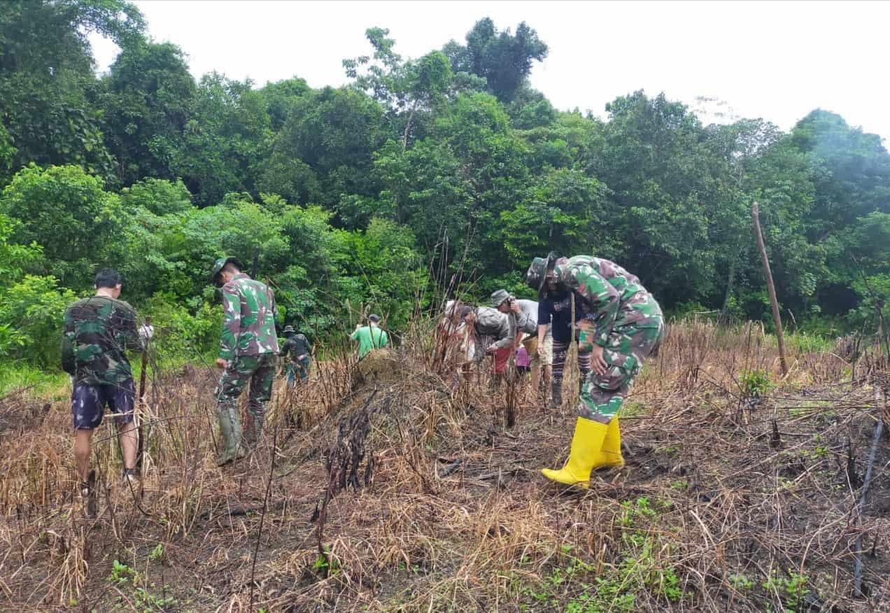 Personel Satgas Yonif 144/JY Nugal Padi Bersama Warga Perbatasan
